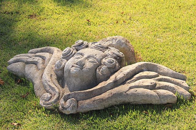 Foto arte em Pedra de Coronel Xavier Chaves